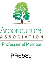 Arboricultural Association Professional member
